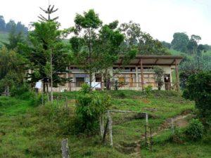 écotourisme